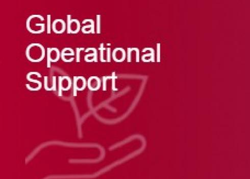 Global Operational Support