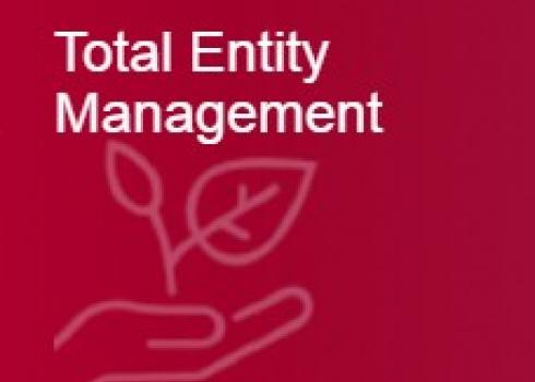 Total Entity Management